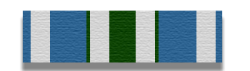 Volunteer Service Medal