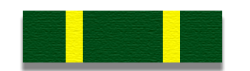 NCO Development Ribbon